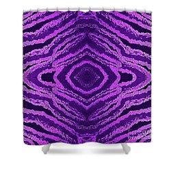 Spirit Journey Inward Shower Curtain by Rachel Hannah
