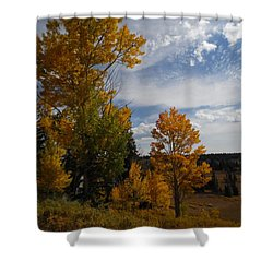 Spirit Of Autumn Dixie National Forest, Utah Shower Curtain