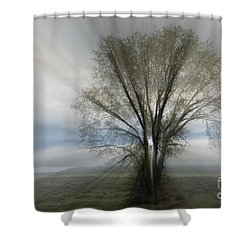 Shower Curtain featuring the photograph Spirit Of Nature by Sandra Bronstein