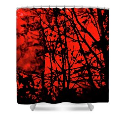 Spirit Of The Mist Shower Curtain