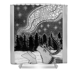 Spirit Of Wonder Shower Curtain