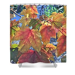 Splash Of Autummmmmm Shower Curtain