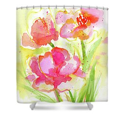 Splash Of Pinks  Shower Curtain