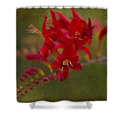 Splash Of Red. Shower Curtain