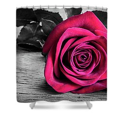 Splash Of Red Rose Shower Curtain