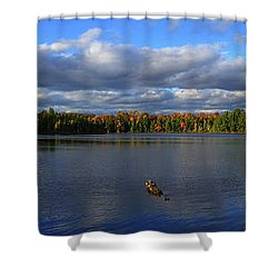 Splendid Autumn View Panoramic Shower Curtain by Brook Burling
