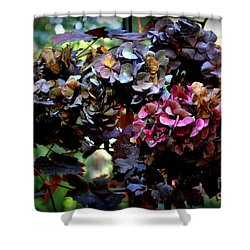 Splendid Hydrangea Shower Curtain