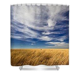 Splendid Isolation Shower Curtain