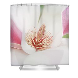 Shower Curtain featuring the photograph Splendid Spring by Toni Hopper