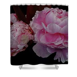 Splendor In Pink Shower Curtain