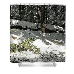 The Splendour Of Snow Shower Curtain