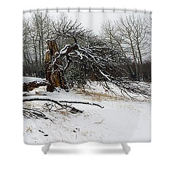 Shower Curtain featuring the photograph Split Personality - Panorama by Shane Bechler