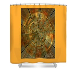 Split Spin Shower Curtain