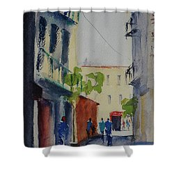 Spofford Street3 Shower Curtain
