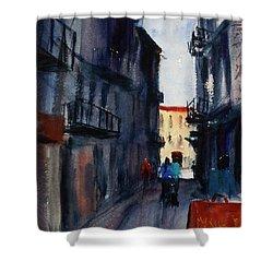 spofford Street5 Shower Curtain