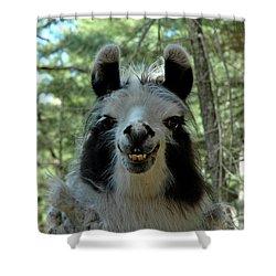Shower Curtain featuring the photograph Spooky Llama by LeeAnn McLaneGoetz McLaneGoetzStudioLLCcom