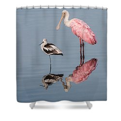 Spoonbill, American Avocet, And Reflection Shower Curtain