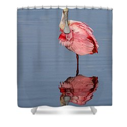 Spoonbill And Reflection Shower Curtain