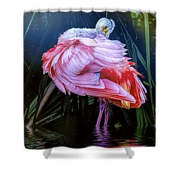 Shower Curtain featuring the photograph Spoonbill Fandance by Brian Tarr