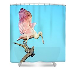 Spoonbill Flight Shower Curtain
