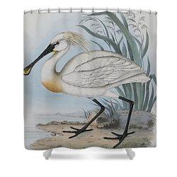 Spoonbill Shower Curtain