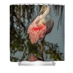 Spoonbill Resting Shower Curtain by Dorothy Cunningham