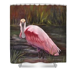Spoonbill Roseate Bird Shower Curtain