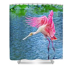 Spoonbill Splash Shower Curtain