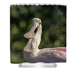 Spoonbill Talk Shower Curtain