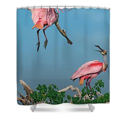 Spoonbills Greeting Shower Curtain