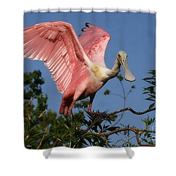 Spoonie In The Treetop Shower Curtain by Myrna Bradshaw