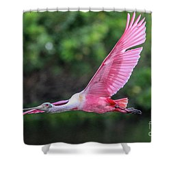 Spoony In Flight Shower Curtain
