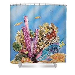 Spotlight Parrotfish Shower Curtain by Tanya L Haynes - Printscapes
