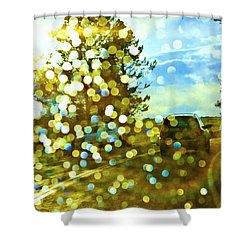 Spots Of Light Shower Curtain