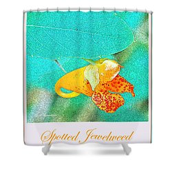 Shower Curtain featuring the photograph Spotted Jewelweed Wildflower by A Gurmankin