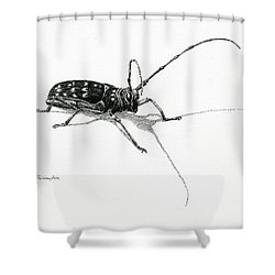 Spotted Pine Sawyer Shower Curtain