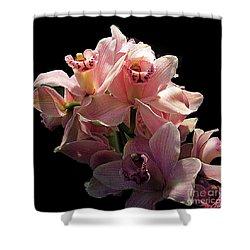 Spray Of Pink Orchids Shower Curtain by Merton Allen