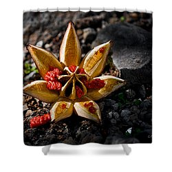 Spread Thy Seed Shower Curtain by Christopher Holmes
