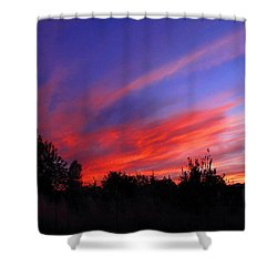 Shower Curtain featuring the photograph Spreading The Joy by Joyce Dickens