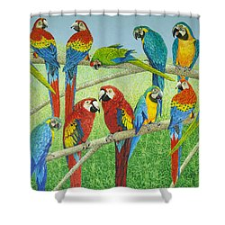 Spreading The News Shower Curtain by Pat Scott
