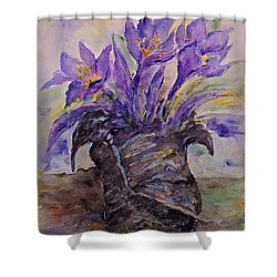 Spring In Van Gogh Shoes Shower Curtain
