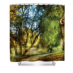 Spring - Landscape - My Journey My Path Shower Curtain by Mike Savad