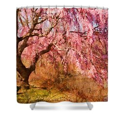 Spring - Sakura - A Beautiful Spring Day  Shower Curtain by Mike Savad