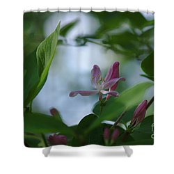 Shower Curtain featuring the photograph Spring 2016 11 by Cendrine Marrouat