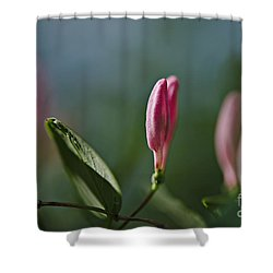 Shower Curtain featuring the photograph Spring 2016 12 by Cendrine Marrouat