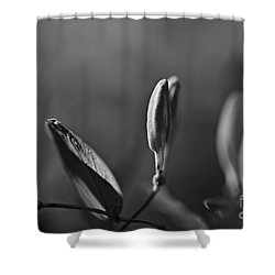 Shower Curtain featuring the photograph Spring 2016 13 by Cendrine Marrouat