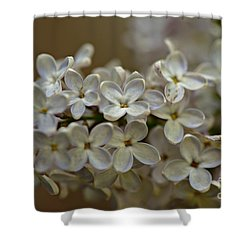 Shower Curtain featuring the photograph Spring 2016 14 by Cendrine Marrouat
