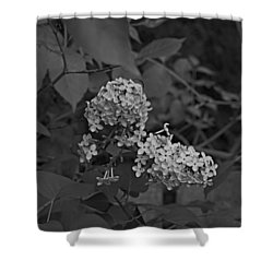 Shower Curtain featuring the photograph Spring 2016 16 by Cendrine Marrouat
