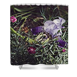 Shower Curtain featuring the photograph Spring 2016 17 by Cendrine Marrouat