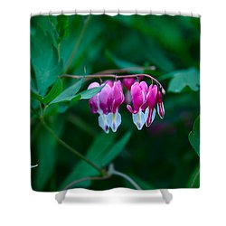 Shower Curtain featuring the photograph Spring 2016 21 by Cendrine Marrouat